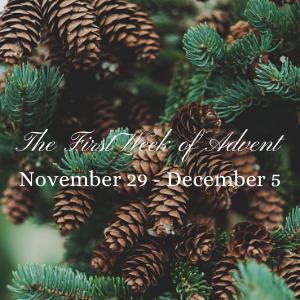 November 29 - December 5